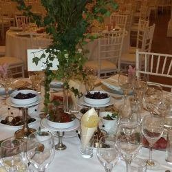 Hochzeit_Schönbrunn-e1467131591731-1020x1813